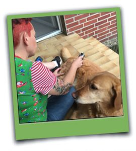 Behandlung am Hund