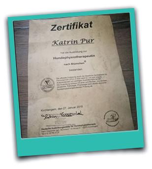 Zertifikat Ausbildung Hundephysiotherapie