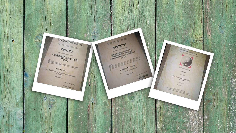 Zertifikate und Teilnahmebestätigungen